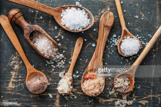 Wooden spoons with different sorts of salt