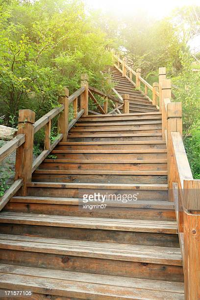 Escalier en bois dans le jardin