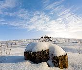 wooden stump among a winter snowbound plain