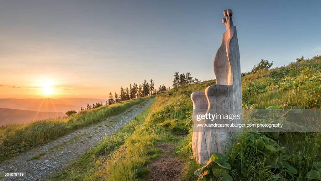 Wooden throne in morning light