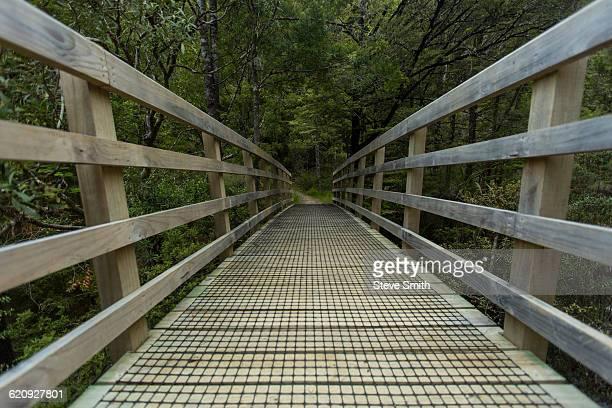 Wooden walkway in rural forest