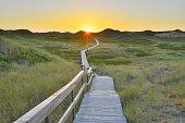 Wooden Walkway through Dunes