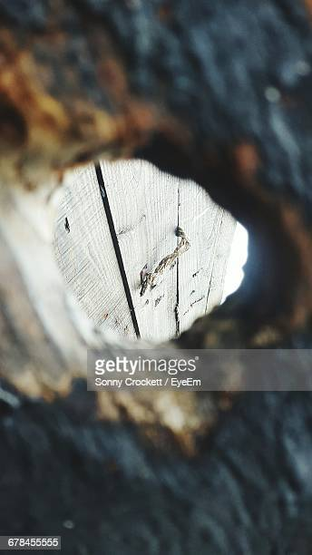 Wooden Wall Seen Through Hole In Old Fence