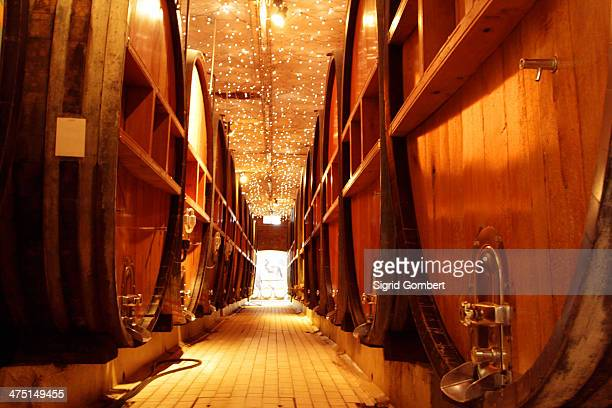 Wooden wine barrels in industrial wine cellar