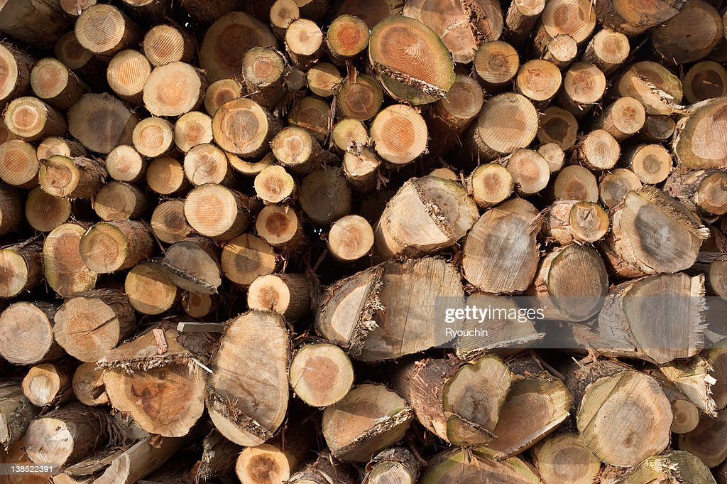 wood,lumber : Stock Photo