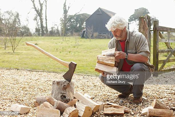 Woodsman gathering split logs