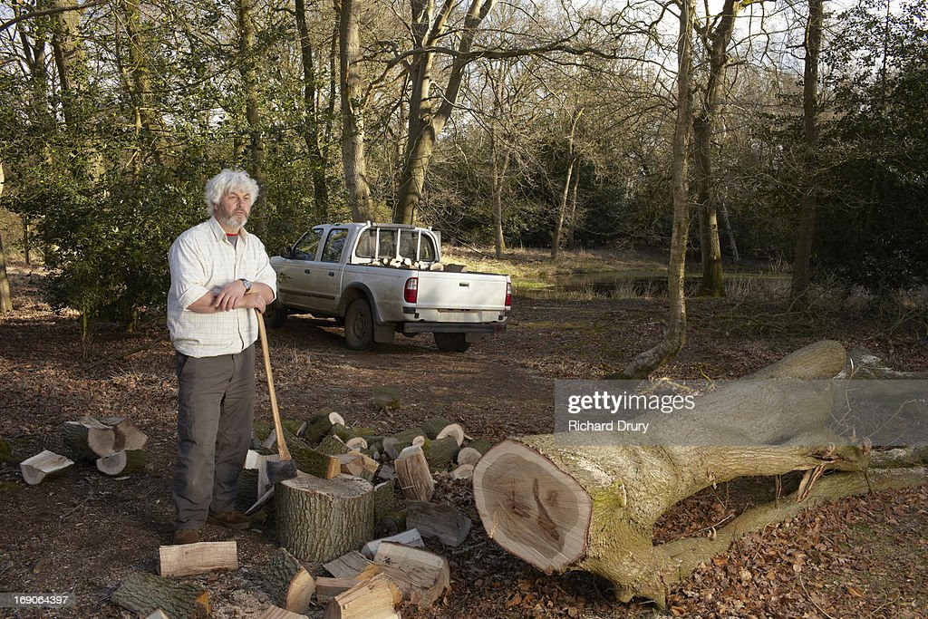 Woodsman with felled oak tree and split logs : Stock Photo