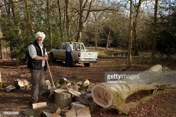 Woodsmen splitting oak logs and loading truck