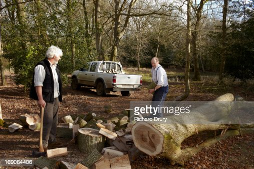 Woodsmen splitting oak logs and loading truck : Stock Photo