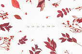 Autumn composition. Word Autumn, flowers and leaves on white background. Flat lay, top view