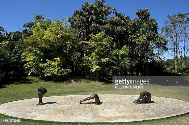 A work by Brazilian artist Edgard de Souza is displayed at the Inhotim Centre for Contemporary Art in Brumadinho some 60 km from Belo Horizonte...