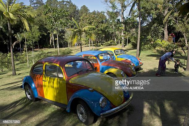 A work by Brazilian artist Jarbas Lopes is displayed at the Inhotim Centre for Contemporary Art in Brumadinho some 60 km from Belo Horizonte...