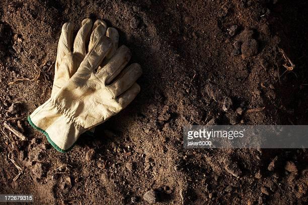 Die Handschuhe in Moto