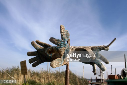 Work gloves in sculpture   : Stock Photo