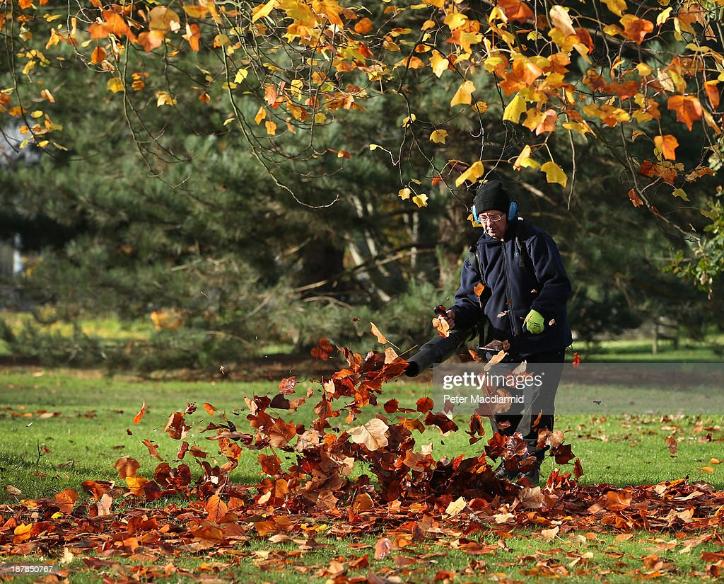 A worker at the Royal Botanic Gardens, Kew uses a blower to clear up fallen leaves on November 13, 2013 in London, England. Autumn's colours are showing later in the season this year due to a record cold spring.