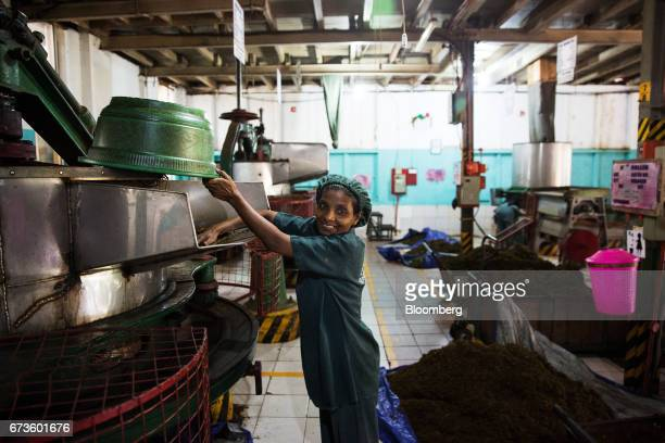 A worker attends to a machine at the factory of the Geragama Tea Estate operated by Pussellawa Plantations Ltd in Pilimathalawa Central Sri Lanka on...
