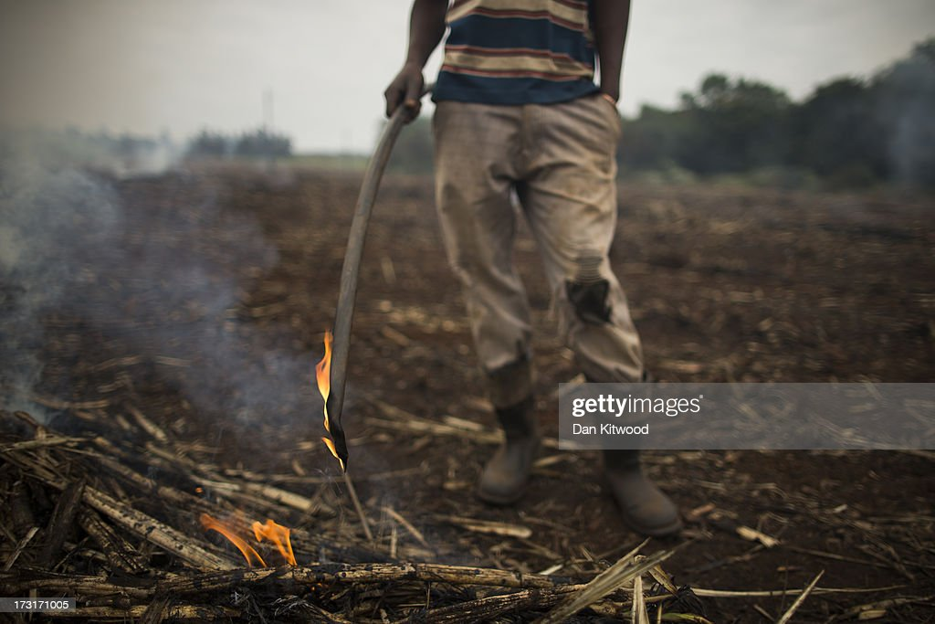A worker burns stubble in a sugarcane field near the Kruger National Park on July 8, 2013 in Komatiepoort, South Africa. South Africa is the world's tenth largest producer of sugarcane with growers annually producing an average of 19.9 million tons of sugarcane per year. The participation of black farmers working on sugarcane production is constantly increasing through the development and empowerment of previously disadvantaged people within their communities.