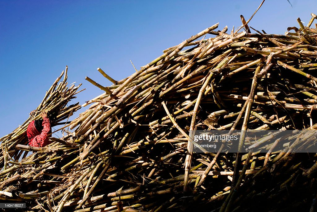 A worker carries a bundle of cut sugar cane for making handmade panela, a solid piece of unrefined whole cane sugar obtained from the boiling and evaporation of sugarcane juice, at a tradtional sugar mill in in Tepetitan, El Salvador, on Sunday, Feb. 26, 2012. Global sugar supply will be 'under pressure' amid significant demand growth by 2020, which may push prices up further, according to Mannheim, Germany-based refiner Suedzucker AG. Photographer: Juan Carlos/Bloomberg via Getty Images
