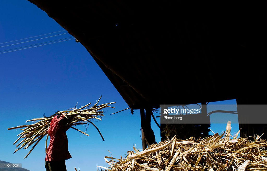 A worker carries a bundle of cut sugar cane for making handmade panela, a solid piece of unrefined whole cane sugar obtained from the boiling and evaporation of sugarcane juice, at a traditional sugar mill in Tepetitan, El Salvador, on Sunday, Feb. 26, 2012. Global sugar supply will be 'under pressure' amid significant demand growth by 2020, which may push prices up further, according to Mannheim, Germany-based refiner Suedzucker AG. Photographer: Juan Carlos/Bloomberg via Getty Images