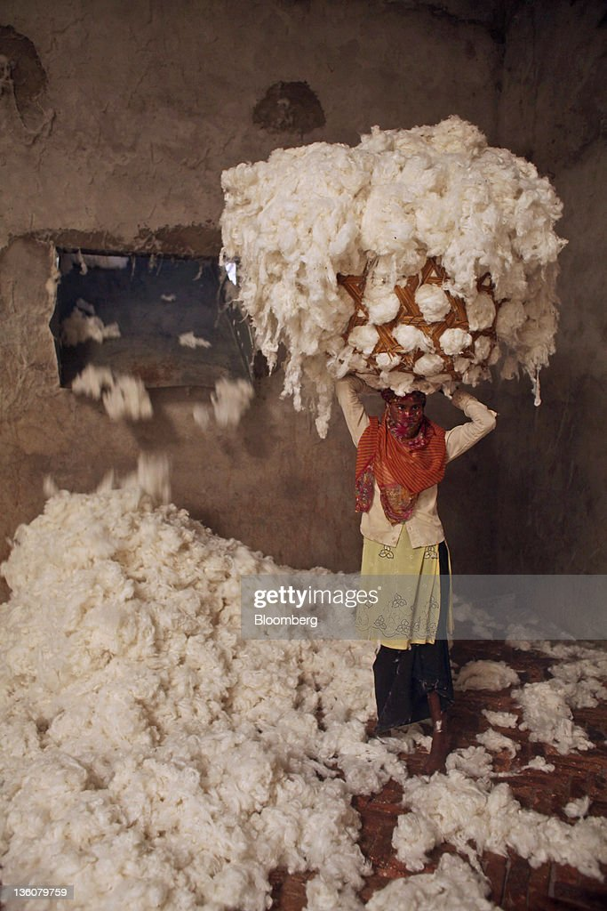 A worker carrying a bundle of cotton stands for a photograph in a ginning mill in Wankaner, India, on Sunday, Dec. 18, 2011. Cotton sales by growers in India, the second-biggest producer, declined 26 percent in the season that began Oct. 1, according to the Cotton Corp. of India, the nation's biggest buyer. Photographer: Adeel Halim/Bloomberg via Getty Images