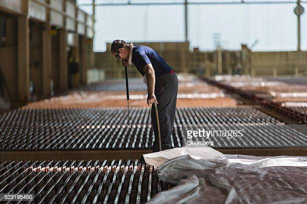 A worker checks copper anode plates in the tank house at the Aurubis AG metals plant in Hamburg Germany on Thursday April 21 2016 China has...