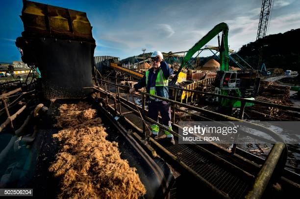 A worker checks the biomass line at the Ence's plant in Pontevedra on December 16 2015 Ence is the Spain's market leader in the production of...