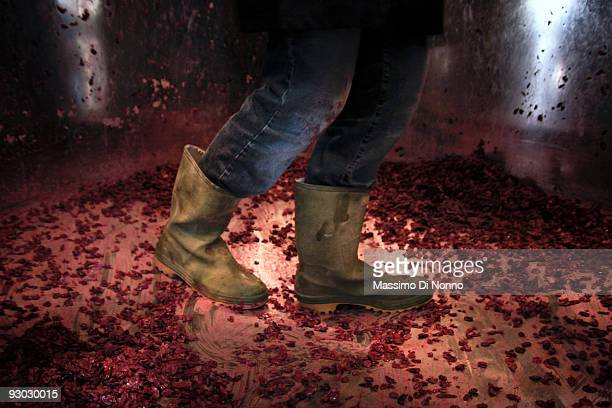A worker cleans the fermentation tank in the winery on October 6 2009 in Novello near Cuneo Italy Barolo wine is produced in Cuneo province within...