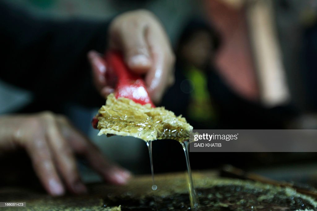 A worker collects honey at the honey-bee farm of Ahmed Zoarob, a Palestinian agronomist and beekeeper, on April 8, 2013 in Rafah in the southern Gaza Strip. The apiary's 450 bees produce some 4.000 kilos of honey every year, that are exclusively sold in the Gaza Strip.