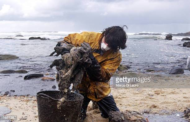 A worker collects oil spilled from the singlehulled oil tanker Prestige that covers the beach November 23 2002 in Muxia northern Spain The Spanish...