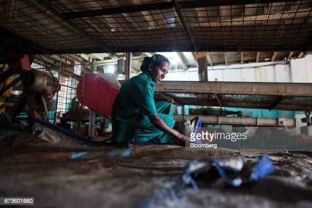 A worker collects tea leaves that have been separated by a machine at the factory of the Geragama Tea Estate operated by Pussellawa Plantations Ltd...