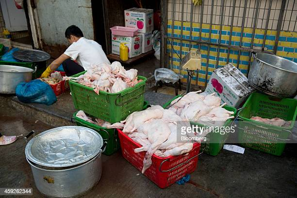 A worker crouches near containers of chickens and geese outside a restaurant in the Gongbei district of Zhuhai Guangdong province China on Sunday Nov...