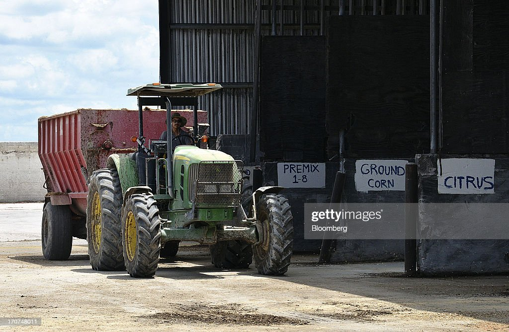 A worker drives a feed-spreader to pick up a load of scientifically-blended cattle feed at J.M. Larson Dairy 3 in Okeechobee, Florida, U.S., on Friday, June 14, 2013. The U.S. House of Representatives is considering amendments to a five-year farm policy and food-aid bill to change a dairy program that would require participating farmers to cut milk production if prices fall to a set level. Photographer: Mark Elias/Bloomberg via Getty Images