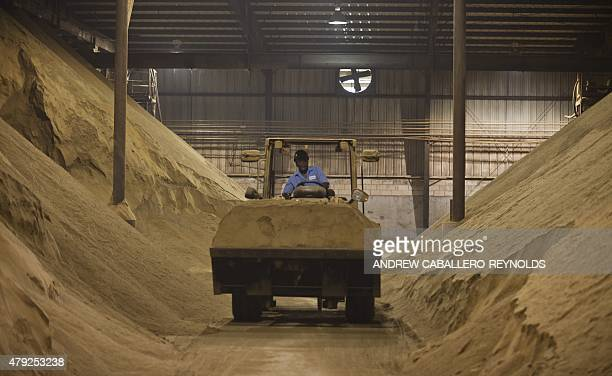 A worker drives a tractor past mounds of dried and crushed Menhaden fish to be used as animal feed supplements at the Omega Protein processing plant...