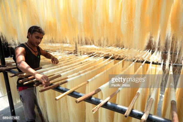 A worker drying vermicelli at a factory during Ramadan month Vermicelli is most populer sweet dish used by Muslims during Ramadan month