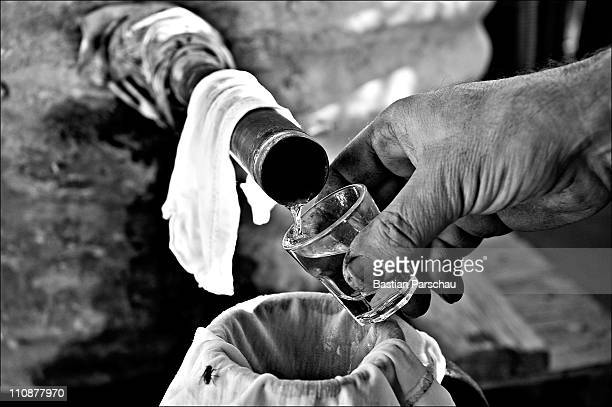 A worker during a raki production try the first raki at the distillery on October 23 2009 in Heraklion Greece Raki is a distillate of the mash from...