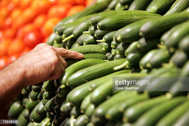 A worker fills the vegetable shelves with organic cucumbers at the Eden Natural supermarket which officially opens later this week June 11 2007 in...