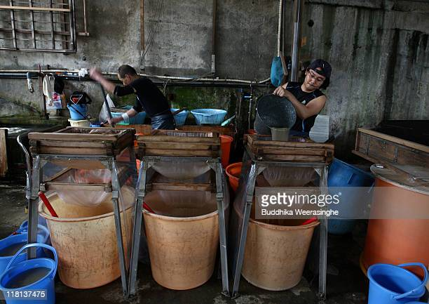 A worker filters pulp at a mill that produces handmade paper at Iwano Heizaburo Seishi Sho Company in Echizen village on July 4 2011 in Fukui Japan...