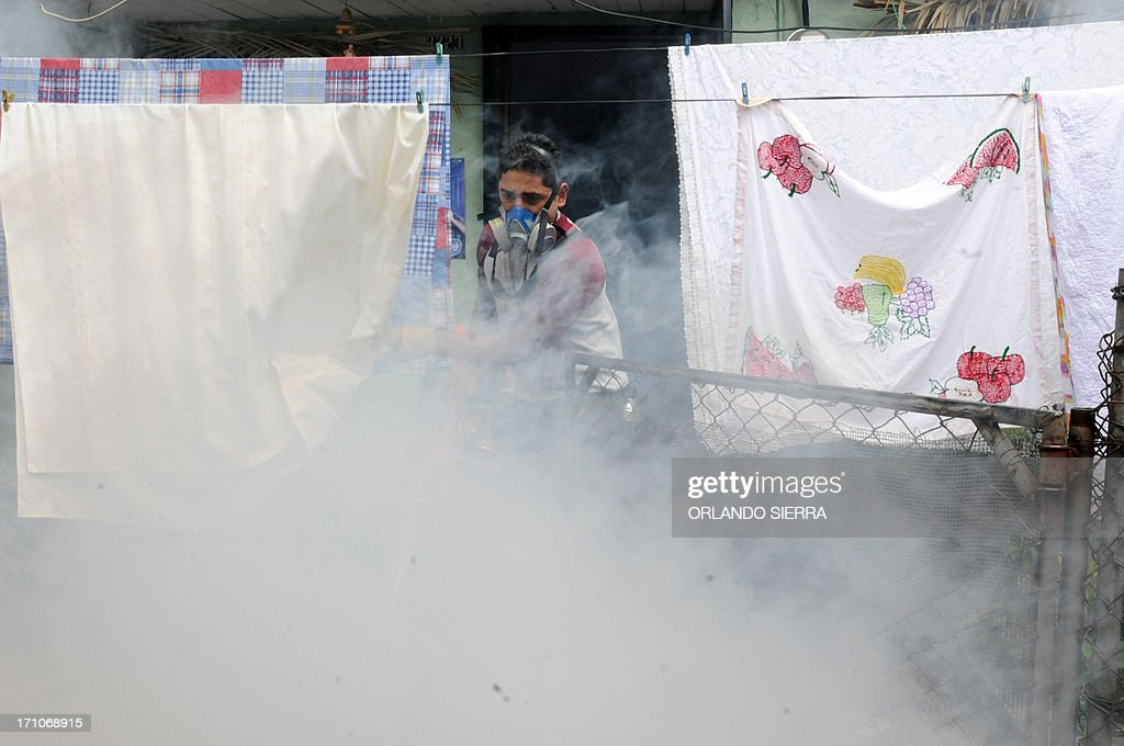 A worker fumigates against the dengue fever mosquito, Aedes aegypti at the John Kennedy neighborhood in Tegucigalpa on June 21, 2013. Health authorities will ask the government to decree a state of emergency due to the spread of the mosquito. AFP PHOTO /Orlando SIERRA.