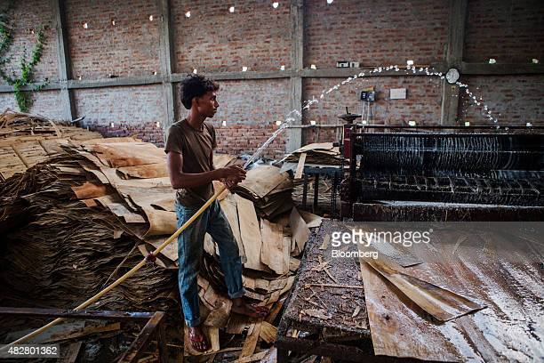 A worker hoses down a veneer layering and glue spreading machine used for assembling sheets of veneer at a plywood manufacturing workshop in...