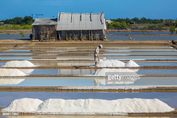 worker in a salt marsh in the Mekong Delta (Long Hai, in Vung tau province)