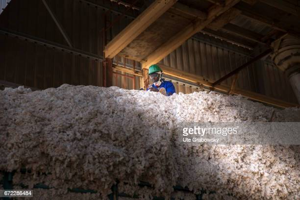 Worker in a warehouse with raw cotton at the company Faso Coton Here raw cotton is seeded seeds and cotton are separated and will be sold on February...