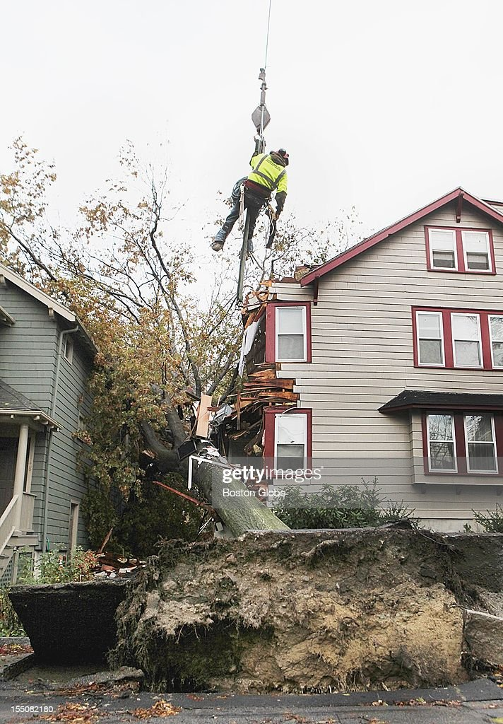 A worker is lifted at the scene of an oak tree that fell on a house on Larch Road in Cambridge, Tuesday, October 30, 2012, the day after Hurricane Sandy hit the northeast.
