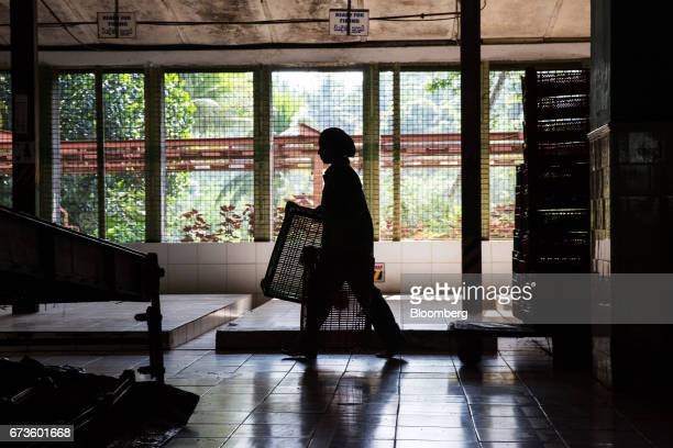 A worker is silhouetted as she carries crates at the factory of the Geragama Tea Estate operated by Pussellawa Plantations Ltd in Pilimathalawa...
