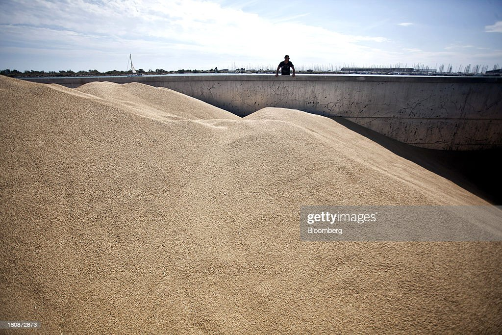 A worker looks out onto winter barley stored in the cargo hold of the barge 'Poseidon' during operations at Tellines Port, operated by the Marseille-Fos Port Authority in Port Saint Louis du Rhone, France, on Monday, Sept. 16, 2013. European Union average corn yields will be lower than expected last month after hot and dry weather in Italy during flowering in August hurt the grain, according to the bloc's crop-monitoring unit. Photographer: Balint Porneczi/Bloomberg via Getty Images