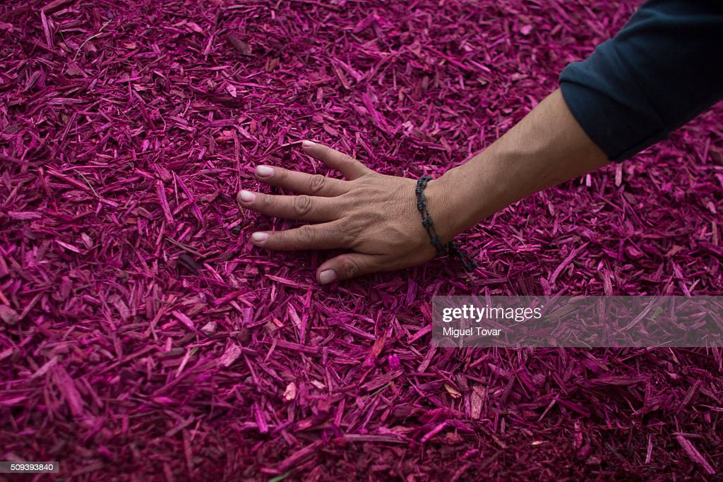 A worker makes a silhouette of Pope Francis with colored wood chips at Angel de la Independencia monument on February 10, 2016 in Mexico City, Mexico. Mexico waits for the upcoming visit of Pope Francis on February 12-17.