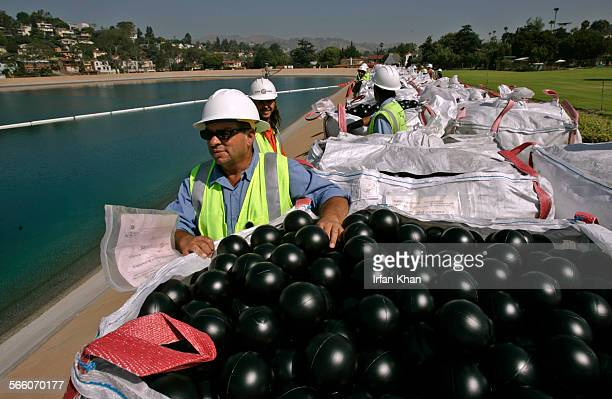 DWP worker Manuel Martinez in foreground and others are waiting for signal from the officials to empty out bales of black balls in Ivanhoe reservoir...