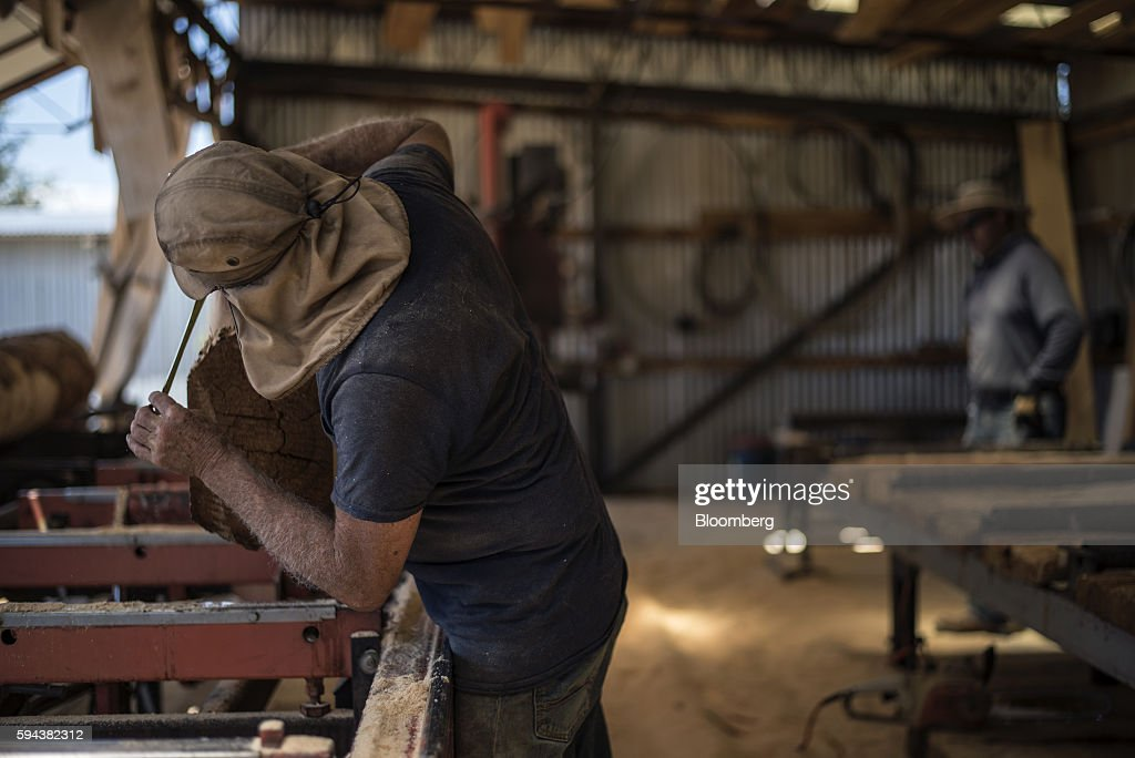 A worker measures a log's dimensions at the Spotted Owl Timber Inc mill in Santa Fe New Mexico US on Monday Aug 15 2016 Founded in 1991 the family...
