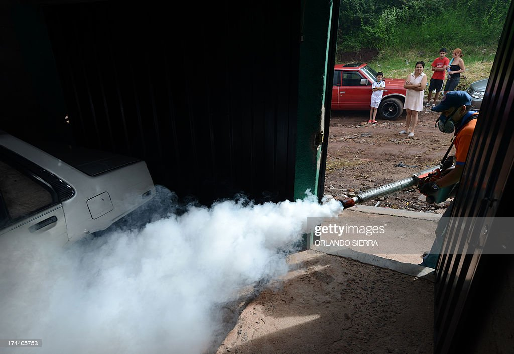 A worker of the Contingencies Committee fumigates against the dengue fever mosquito, Aedes aegypti, in Tegucigalpa on July 25, 2012. Authorities have issued dengue alerts in four nations across Central America, where alarm is rising as the mosquito-borne disease has infected 40,000 people and killed 16 this year alone. AFP PHOTO /Orlando SIERRA
