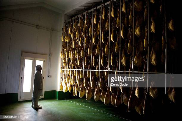 A worker of the Estrella de Castilla factory looks at a row of drycured Jamon Iberico de bellota in the in the town of Guijuelo on December 14 2012...