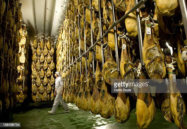 A worker of the Estrella de Castilla factory walks past rown of drycured Jamon Iberico de bellota in the in the town of Guijuelo on December 14 2012...